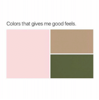 Precious, Good, and Girl Memes: Colors that gives me good feels. my precious