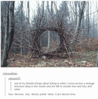 Memes, Portal, and 🤖: colossaltitan  ca  one of my favorite things about hiking is when i come across a strange  structure deep in the woods and am left to wonder how and why and  when  how: demons. why: demon portal. when: 5 pm demon time - Game day🏒🔥 scarystories