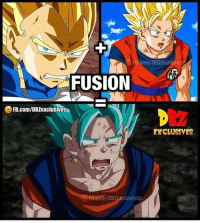 Anime, Bulma, and Dragonball: com/DBZexclusiv  FUSION  FB.com/DBZexclusives  EXCLUSIVES  B.cen/DBZexclusives Makes sense Goku Vegeta Beerus Whis Xenoverse2 goten trunks bulma chichi Gohan otaku ssj ssj2 ssj3 ssj4 anime Zwarriors SuperSaiyanBlue Dragonball DragonballZ DragonballGT DragonballSuper Db Dbz Dbgt Dbs anime NamcoBandai over9000