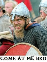 A declaration of war against Furious Frank Memes, Violent Viking Memes, and Nasty Norman Memes.  We will not forgive, we will not forget. We are out for blood, and we shall Sternly™ await your response.: COME AT ME BRO A declaration of war against Furious Frank Memes, Violent Viking Memes, and Nasty Norman Memes.  We will not forgive, we will not forget. We are out for blood, and we shall Sternly™ await your response.