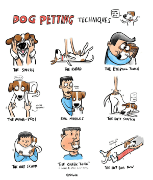 Butt, Dog, and Yes: CoME  AT ME  BRO  DOG PETTING TECHNIQUES  THE SMuSH  THE KNEAD  TAE EYEBALL ToucH  care f  UMM  YES  GENTLE  SQUEEZE  THE MANI PEDI  EAR NIBBLE S  THE BUTT SCRMTCH  THE CHEEk Tuck  THE ARF SCARF  THE HOT  CSYoloHA dog petting techniques, illustrated