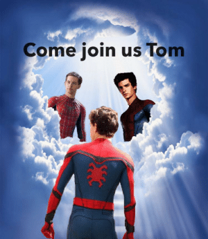 Spider, SpiderMan, and Man: Come join us Tom Because, it's illegal to finish a Spider-Man series.