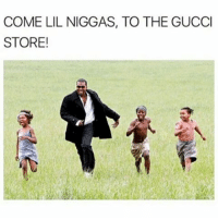 Being Rich, Funny, and Gucci: COME LIL NIGGAS, TO THE GUCCI  STORE! Fuck being rich when im 40, im tryna make it now • ➫➫➫ Follow @Staggering for more funny posts daily!
