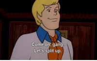 Memes, Scooby Doo, and Gang: Come on, gang  Let's split up. I really like Scooby Doo I just realised I can makes this a depressing Tumblr photo brb