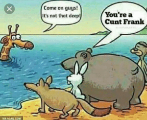 Cunt, Com, and Deep: Come on guys!  It's not that deep!  You're a  Cunt Frank  VIA SGAG.COM Frank Come on..