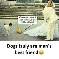 Hold, Manly, and Come on Man: Come on, man!  Run for your life!  I'll hold her!  Dogs truly are man's  best friend