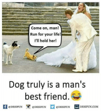 Be Like, Best Friend, and Life: Come on, man!  Run for your life!  I'll hold her!  Dog truly is a man's  best friend  f eDESTPUNDEDESIUN.COM  @DESIFUN DESIFUN.COM Twitter: BLB247 Snapchat : BELIKEBRO.COM belikebro sarcasm meme Follow @be.like.bro