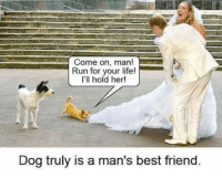 Best Friend, Friends, and Life: Come on, man!  Run for your life!  I'll hold her!  Dog truly is a man's best friend <p>True Friends Are Always There For You.</p>
