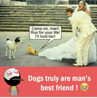 Best Friend, Memes, and Best Friends: Come on, man!  Run for your life!  I'll hold her!  Dogs truly are man's  best friend a