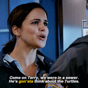 Turtles, The Turtles, and Think: Come on Terry, we were in a sewer.  He's gon'sta think about the Turtles.