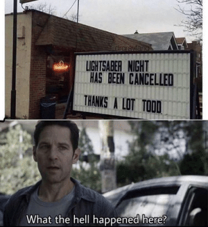 Come on, Todd: Come on, Todd