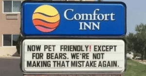 Wonder what the bears did: Comfort  INN  NOW PET FRIENDLY! EXCEPT  FOR BEARS. WE'RE NOT  MAKING THAT MIST AKE AGAIN Wonder what the bears did
