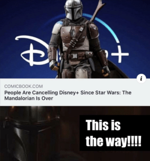 This is the way by frozen-heart-28 MORE MEMES: COMICBOOK.COM  People Are Cancelling Disney+ Since Star Wars: The  Mandalorian Is Over  This is  the way!!! This is the way by frozen-heart-28 MORE MEMES
