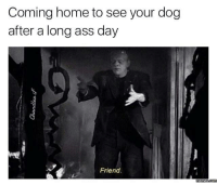 Dank, Coming Home, and 🤖: Coming home to see your dog  after a long ass day  Friend.  mennesscomu Best moment of the day.