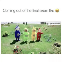 ⠀ 🌱When Its Friday! 😂: Coming out of the final exam like  ig: a bestvines ⠀ 🌱When Its Friday! 😂