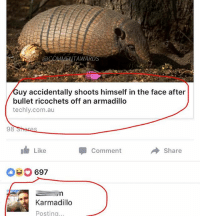 Bulletted: @COMMENTAWAR  uy accidentally shoots himself in the face after  bullet ricochets off an armadillo  techly.com.au  98  Like  Comment  Share  697  Karmadillo  Posting