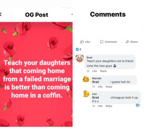 Classic: Comments  OG Post  Like  Share  Comment  O 2  Brad  Teach your daughters  that coming home  from a failed marriage  is better than coming  home in a coffin.  Teach your daughters not to friend  zone the nice guys  Like  Reply  1d  Marriah  Brad  i guess huh lol  1d Like  Reply  Lexi  r/niceguys look it up  Brad  It's u  1  1d  Like  Reply Classic