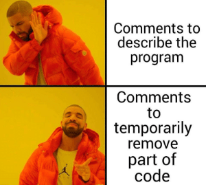 /* This is way too accurate */: Comments to  describe the  program  Comments  to  temporarily  remove  part of  code /* This is way too accurate */