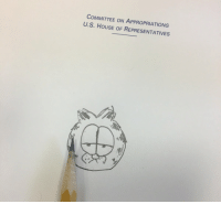 Memes, Tbh, and House: COMMITTEE ON APPROPRIATIONS  U.S. HOUSE OF REPRESENTATIVES Drew a pretty sick Garfield on the Approprations room stationary tbh #TheEarsAreTricky https://t.co/OvJRTbp0n9