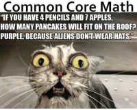 """common core: Common Core Math  """"IF YOU HAVEAPENCILSAND 1APPLES,  HOW MANY PANCAKES WILL FIT ON THE ROOFP  PURPLE BECAUSE ALIENSDONT WEAR HATS"""