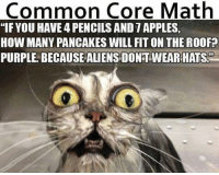 """common core: Common Core Math  """"IFYOU HAVE PENCILS AND 7 APPLES  HOW MANY PANCAKES WILL FIT ON THE ROOFP  PURPLE BECAUSE ALIENS DONTWEAR HATS"""