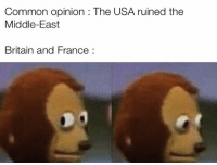 Common, France, and The Middle: Common opinion : The USA ruined the  Middle-East  Britain and France: Don't move! They can't see us if we don't move. https://t.co/Y64f3I7arz