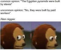 "Fresh, Memes, and Alien: common opnion: ""The Egyptian pyramids were built  by slaves""  uncommon opinion: ""No, they were built by paid  workers'""  Alien niggas History memes fresh out the oven ♨️"