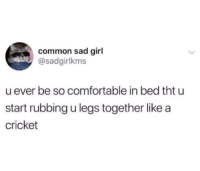 Comfortable, Dank, and Common: common sad girl  @sadgirlkms  u ever be so comfortable in bed tht uu  start rubbing u legs together like a  cricket Comfy is as comfy does.