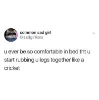 Comfortable, Tumblr, and Blog: common sad girl  @sadgirlkms  u ever be so comfortable in bed tht u  start rubbing u legs together like a  cricket the-memedaddy:  Meirl