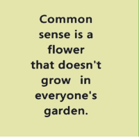 Common: Common  Sense a  flower  that doesn't  grow in  everyone's  garden.