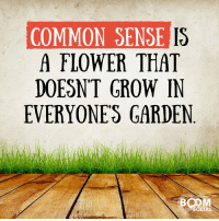 COMMON SENSE  IS  A FLOWER THAT  DOESNT GROW IN  EVERYONE GARDEN  SOCIAL Unfortunately, common sense is a flower that doesn't grow in everyone's garden :-).