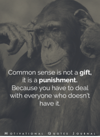 Memes, Common, and Common Sense: Common sense is not a gift,  it is a punishment.  Because you have to deal  with everyone who doesn't  have it.  M o T VA T  I O N AL  Q u o T E s J O U R N A L ♥