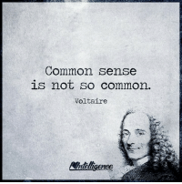 Voltaire: Common sense  is not so common.  Voltaire