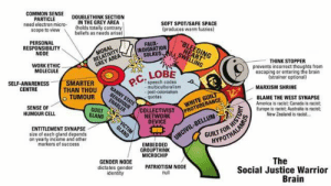 """Posted by a grandma on Discord: COMMON SENSE  PARTICLE  need electron micro-  scope to view  DOUBLETHINK SECTION  IN THE GREY AREA  (holds totally contrary  beliefs as needs arise)  SOFT SPOT/SAFE SPACE  (produces warm fuzzies)  """"BLEEDING  HEART  SWELING  PERSONAL  RESPONSIBILITY  NODE  FAUX-  INDIGNATION  SULKUS  RELATIVITY  GREY AREA  MORAL  THINK STOPPER  prevents incorrect thoughts from  escaping or entering the brain  (strainer optional)  WORK ETHIC  MOLECULE  LOBE  P.C.  SMARTER  THAN THOU  TUMOUR  speech codes  multiculturalism  - post-colonialism  quotas  SELF-AWARENESS  CENTRE  - MARXISM SHRINE  NANNY STATE  BEHAVIOUR  ENABLER  WHITE GUILT  PROTUBERANCE  BLAME THE WEST SYNAPSE  America is racist: Canada is racist;  Europe is racist; Australia is racist;  New Zealand is racist  SENSE OF  HUMOUR CELL  COLLECTIVIST  NETWORK  DEVICE  GUILT  GLAND  VICTIM  GLAND  ENTITLEMENT SYNAPSE  size of each gland depends  on yearly income and other  markers of success  UNCIVIL-BELLUM  HYPOTHALAMUS  EMBEDDED  GROUPTHINK  MICROCHIP  The  Social Justice Warrior  Brain  GENDER NODE  dictates gender  identity  PATRIOTISM NODE  null Posted by a grandma on Discord"""