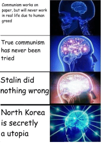 north korea: Communism works on  paper, but will never work  in real life due to human  greed  True communism  has never been  tried  Stalin did  nothing wrong  North Korea  is secretly  a utopia