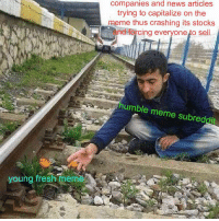 """Fresh, Meme, and News: companies and news articles  trying to capitalize on the  meme thus crashing its stocks  and forcing everyone to sell  humble meme subreddit  young fresh meme <p>meme relation to 3rd party meme killers 101 via /r/MemeEconomy <a href=""""http://ift.tt/2j2ln6r"""">http://ift.tt/2j2ln6r</a></p>"""