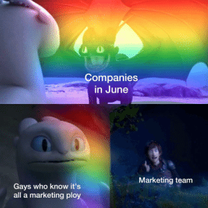 Memes, Http, and Smile: Companies  in June  Marketing team  Gays who know it's  all a marketing ploy Just smile and wave boys via /r/memes http://bit.ly/2EXnwZZ