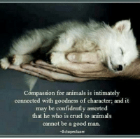 schopenhauer: Compassion for animals is intimately  connected with goodness of character; and it  may be confidently asserted  that he who is cruel to animals  cannot be a good man.  ~Schopenhauer
