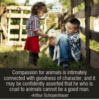 Pass it on (y): Compassion for animals is intimately  connected with goodness of character, and it  may be confidently asserted that he who is  cruel to animals cannot be a good man.  Arthur Schopenhauer Pass it on (y)