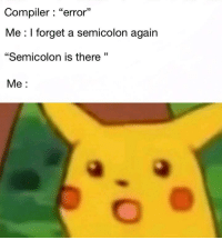 "Life, Story of My Life, and Story: Compiler: ""error""  Me : I forget a semicolon again  ""Semicolon is there""  Me:  13 Story of my life ;"