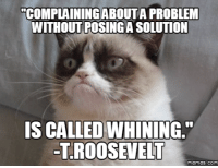 Cat Whining: COMPLAINING ABOUTA PROBLEM  WITHOUT POSINGA SOLUTION  IS CALLED WHINING  -T ROOSEVELT  memes. COM