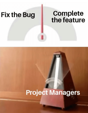 Project, Bug, and Done: Complete  the feature  Fix the Bug  Project Managers Is it done yet?