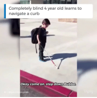 "Bubba, Family, and Life: Completely blind 4 year old learns to  navigate a curb  Okay come on, stepdown Bubba  oupies Omg every time his little voice says ""I can do it!"" my heart melts ❤️ Credit: @GavinsGroupies⠀ ⠀ diply diplyhumor sweet inspiration inspo inspirational family touching humor instafunny comedy funnymemes funnymeme hilarious humour truth relatable life lol"