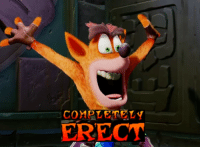 So how about that Crash Bandicoot remaster?: COMPLETELY  ERECT So how about that Crash Bandicoot remaster?