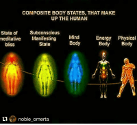 4D Living ⚖️ Repost @noble_omerta with @repostapp ・・・ 🔥✋: COMPOSITE BODY STATES, THAT MAKE  UP THE HUMAN  State of  Subconscious  meditative  Manifesting  Mind  Energy Physical  Body  Body Body  State  bliss  noble omerta 4D Living ⚖️ Repost @noble_omerta with @repostapp ・・・ 🔥✋
