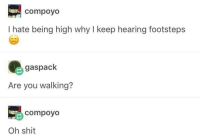 Shit, MeIRL, and Why: compoyo  I hate being high why I keep hearing footsteps  gaspack  Are you walking?  compoyo  Oh shit meirl