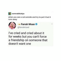 Memes, Friendship, and 🤖: comradekatya  when you see a cat outside and try to pet it but it  runs away  a Farrah Moan  @farrahrized  l've cried and cried about it  for weeks but you can't force  a friendship on someone that  doesn't want one ME ME ME