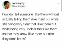 God, Memes, and Best: conan gray  @conangray  how do i tell someone i like them without  actually telling them i like them but while  still being very clear that i like them but  while being very unclear that i like them  so that they know i like them but also  they don't know? @god posts the best memes