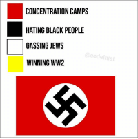 Black, Black People, and Black Twitter: CONCENTRATION CAMPS  HATING BLACK PEOPLE  GASSING JEWS  WINNING WW2 If you have a yellow pfp up rn comment W
