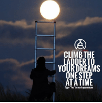 "Memes, Time, and Ambition: CONCIRCLE  AMBITION  CLIMB THE  LADDER TO  YOUR DREAMS  ONE STEP  AT A TIME  Type ""Yes"" to reach your dream Will you reach your dreams? - DOUBLE TAP IF YOU AGREE!"